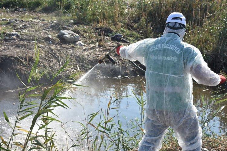 Balıkesir Edremit'te sinek mücadelesi